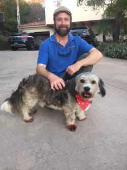 OAS Rescue Dog