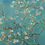 """Thumbnail: Gallery Collection Van Gogh """"Almond Blossom"""" Sheer Scarf"""