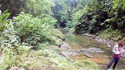 Field work in Trinidad