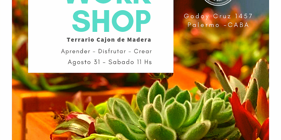 Workshop I -  Terrario Cajon de Madera