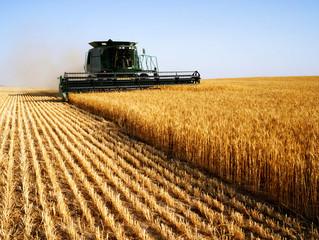 Сбербанк в Зауралье в два раза увеличил объемы кредитования аграриев