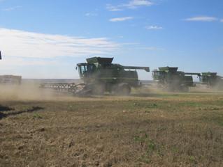 Льготные кредиты помогут уборке урожая в Зауралье
