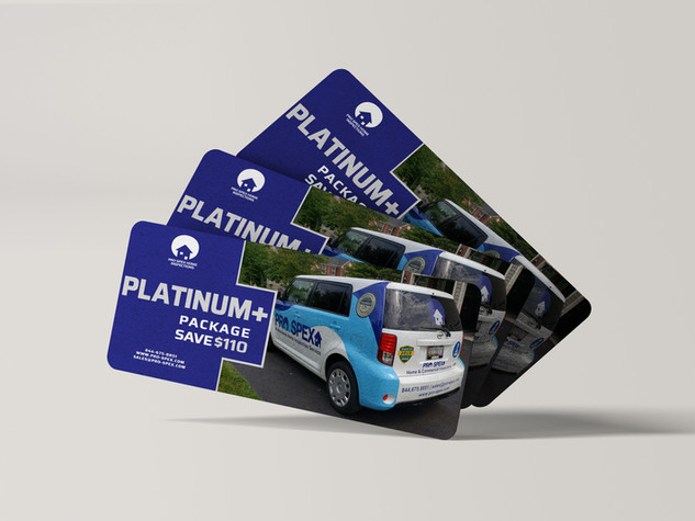 Platinum Plus Package