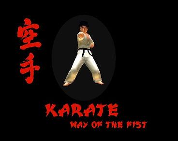 Karate - Way Of The Fist.jpg