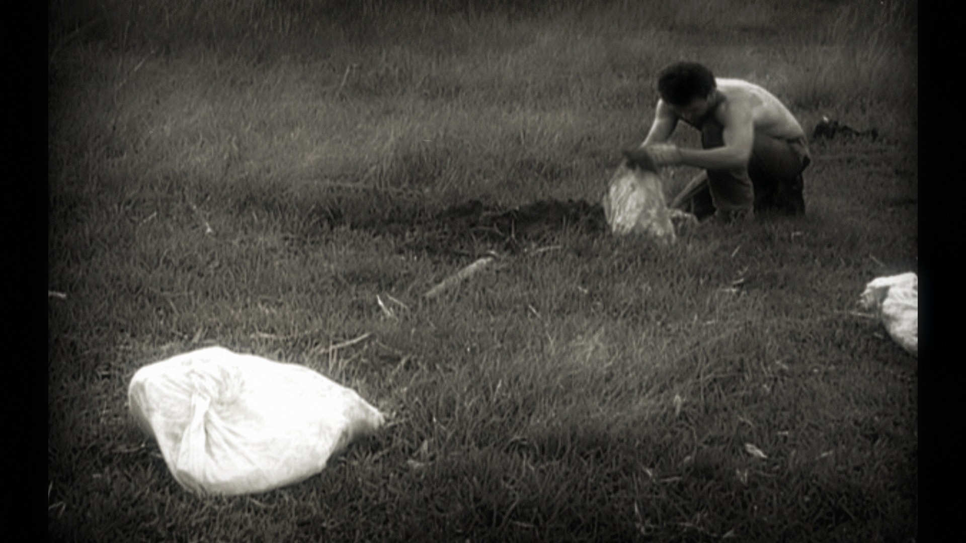MIGRACAO FILME imagem.jpg