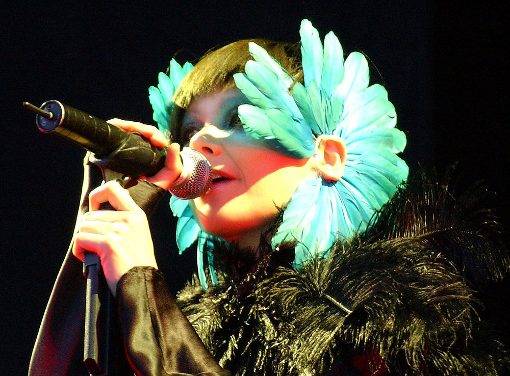 Björk in 2003