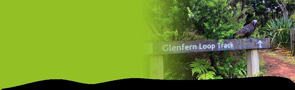 Walks at Glenfern Sanctuary and Accommodation