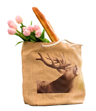 Grocery and Tote Bags in New Zealand by Wild Grey Fox