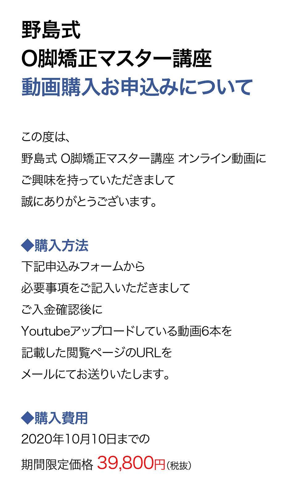LP_野島式O脚矯正マスター講座_動画購入申込ページ_200416-01.j