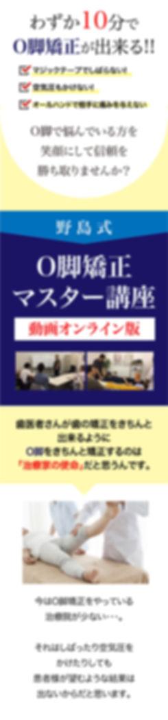 LP_野島式O脚矯正マスター講座_動画購入ページ_200107-01.jpg