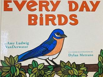 Every Day Birds.jpeg