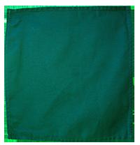 Green Serviettes