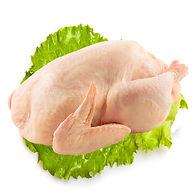 Cornish Hen.jpg
