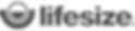 bw_lifesize_logo.png