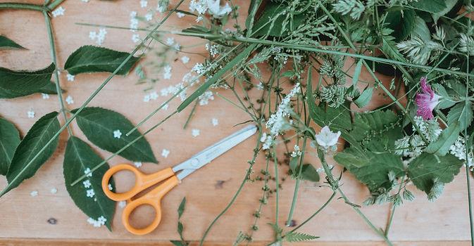 Leaves and scissors.jpg