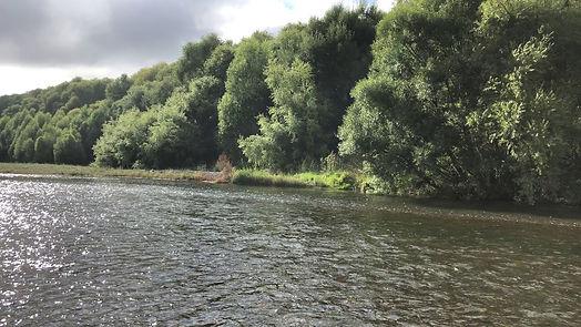Tutaekuri River 1b.jpg
