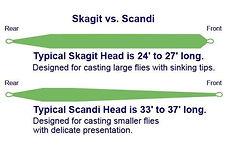 Skagit and Scandi.jpg