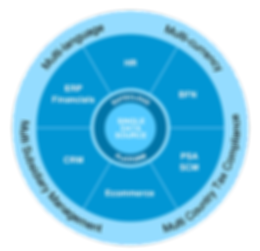 Why-NetSuite-Manage-Your-Operation-Graph