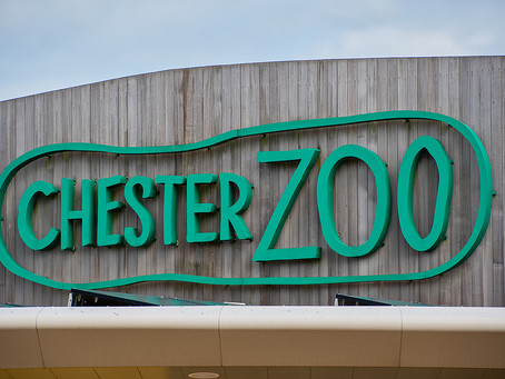 Chester Zoo Reopens Monsoon Forest Exhibit
