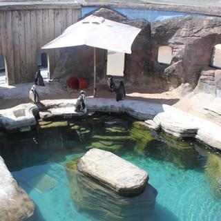 zoo-water.jpg