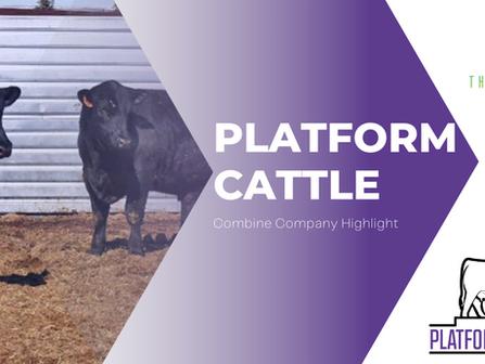 Platform Cattle - Combine Company Highlight