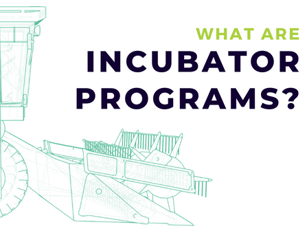What Are Incubator Programs?