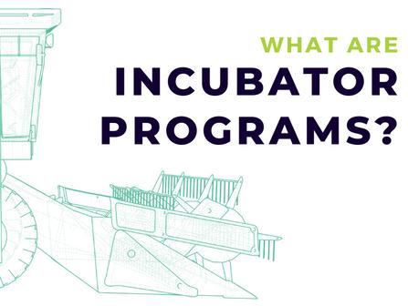 What Are Incubator Programs?