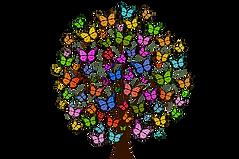 butterflies-2713343_960_720.png