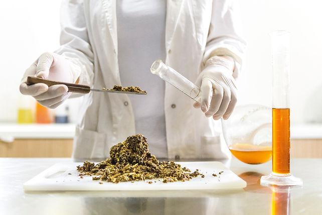 Botanix Ltd Cannabis Extraction Process