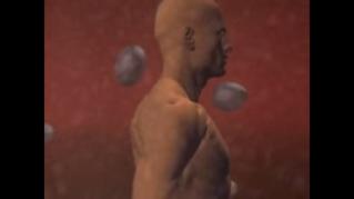 Vídeo 8 de 8: como se forma um ovoide