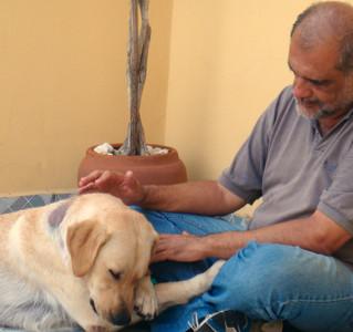 Veja o que acontece em um dos nossos Círculo de Reiki para Pets!