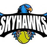 SKYHAWKS logo 3.0.jpg