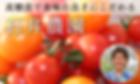 さむかわ、俵屋、寒川、茅ケ崎、湘南、香川、地域、相模國一之宮、お弁当、仕出し弁当、惣菜、冷凍惣菜、食の専門店、石井農園、高齢者、介護、配食サービス