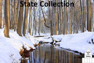 Click for State Collection