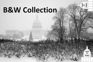 Click for B&W Collection