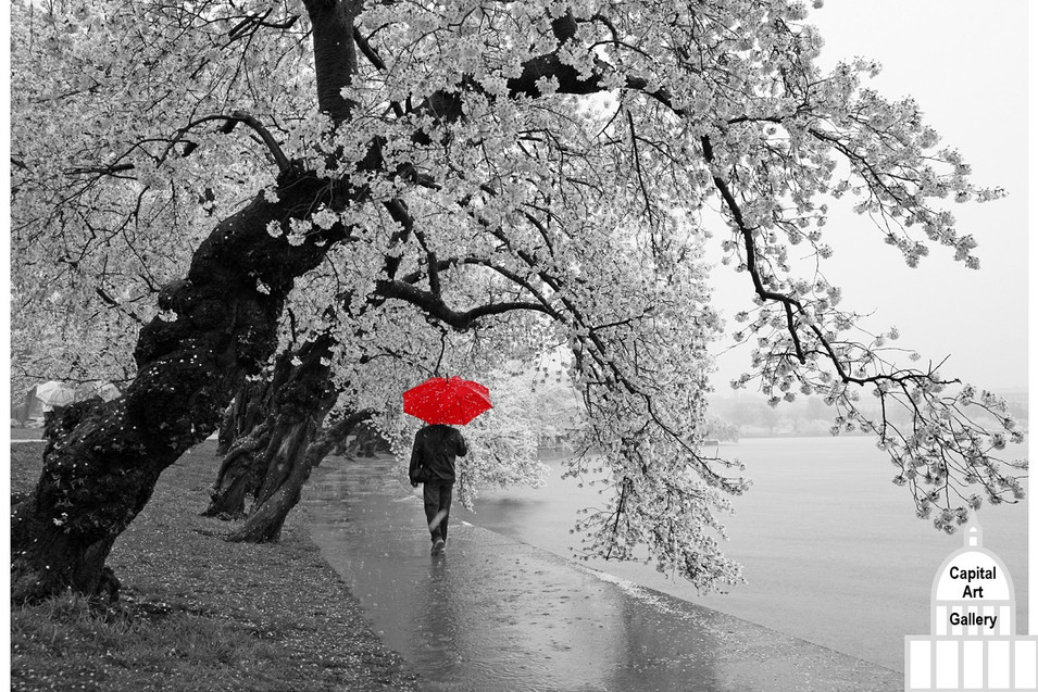 Red Umbrella (C)2020-002 2x3 Aspect.JPG