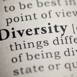 Why are diverse books important?