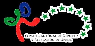Micro CCDR - logo 02.png