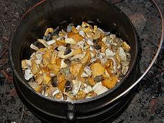 Groupement mycologiue du Pied du Jura Cossonay - Contrôle des champignons