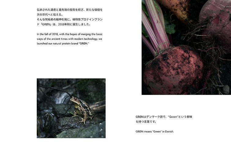 translation_8.jpg