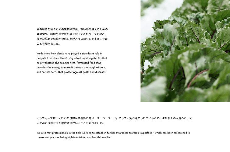 translation_7.jpg