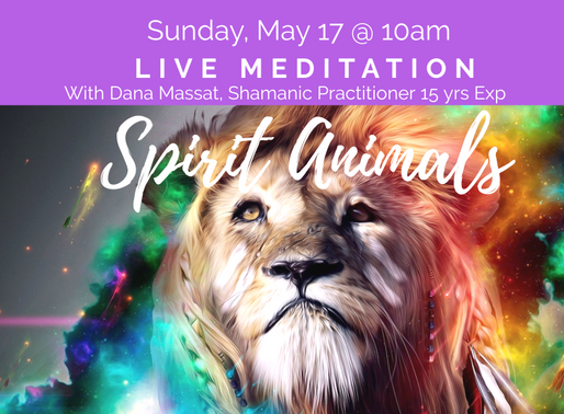 Spirit Animal Meditation-LIVE Virtual on Sunday, May 17th at 10am