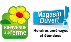 magasin ouvert bis.png