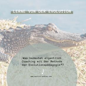 Was bedeutet eigentlich Coaching mit dem Modell der Evolutionspädagogik?
