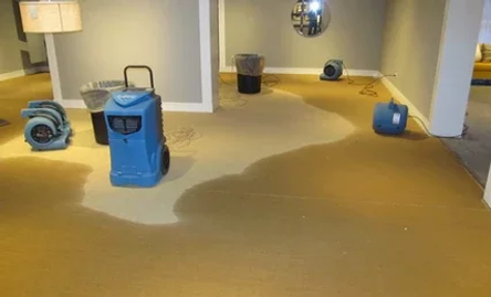 Several blue and black industrial fans dry out the wet carpet in a flooded home.