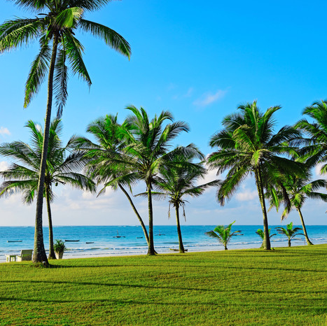 5 Must-Visit Beaches at the Kenyan Coast