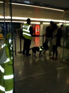 Dogs at work at Bangkok Airport