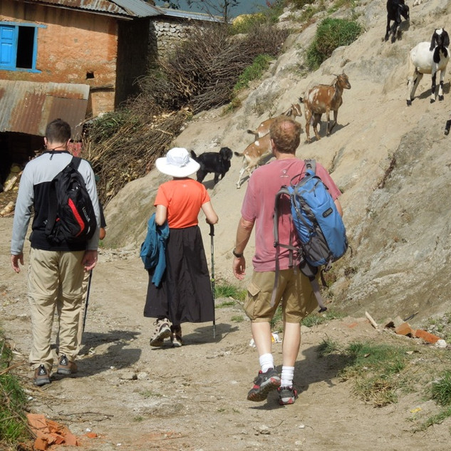 entering_village.jpg