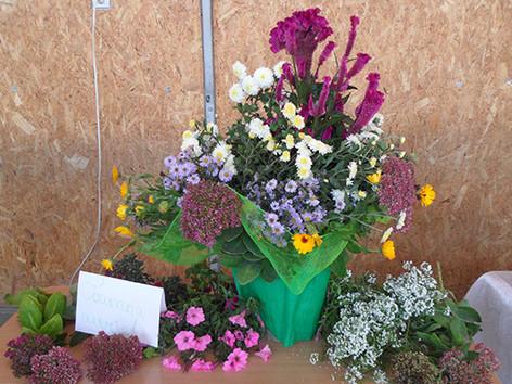 Свято квітів «Барви осені»
