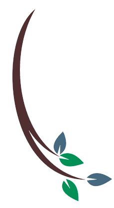 ifiled park logo
